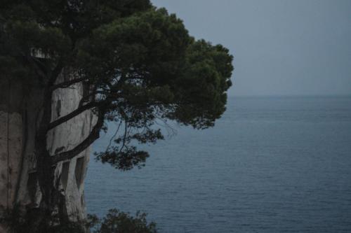 Torre Crestarella - La Torre
